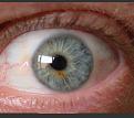 עין זזה