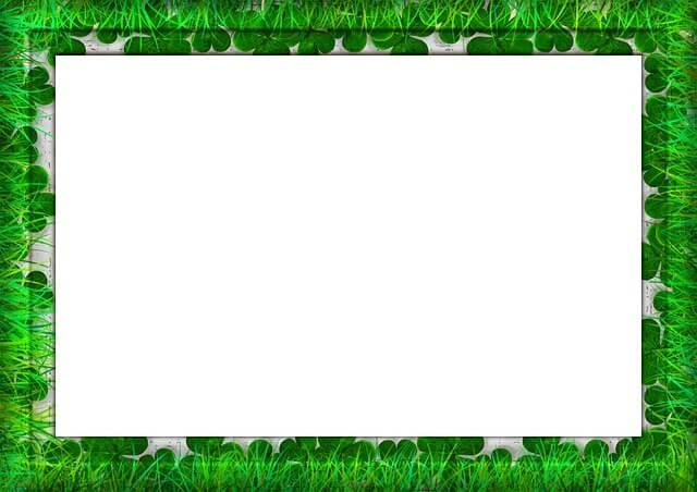 מסגרת ירוקה