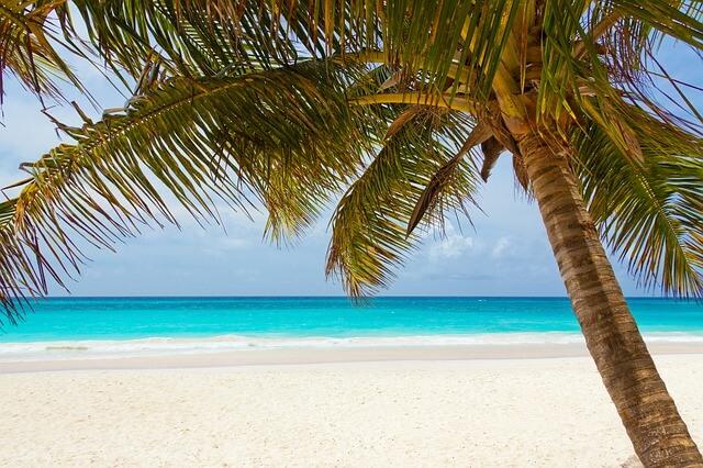 חוף נקי ויפה
