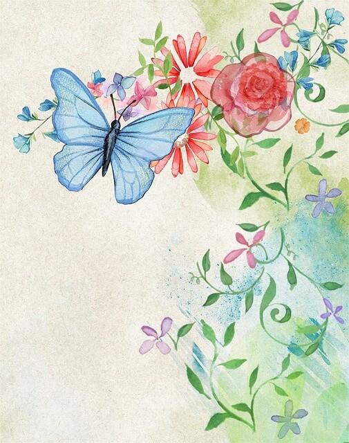 פרפר ופרחים
