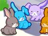 עיצוב ארנבים