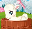הכבשה שלי
