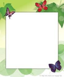 כרטיס ברכה פרפרים