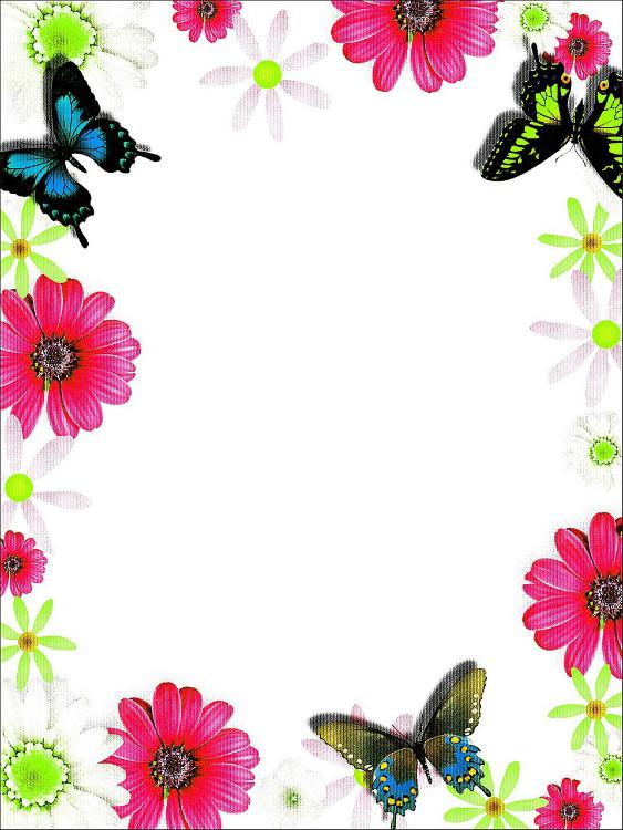 מסגרת פרפרים ופרחים