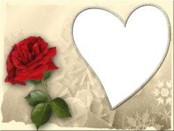 כרטיס ברכה לב ופרח
