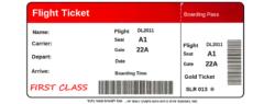 יצירת כרטיס טיסה פ...