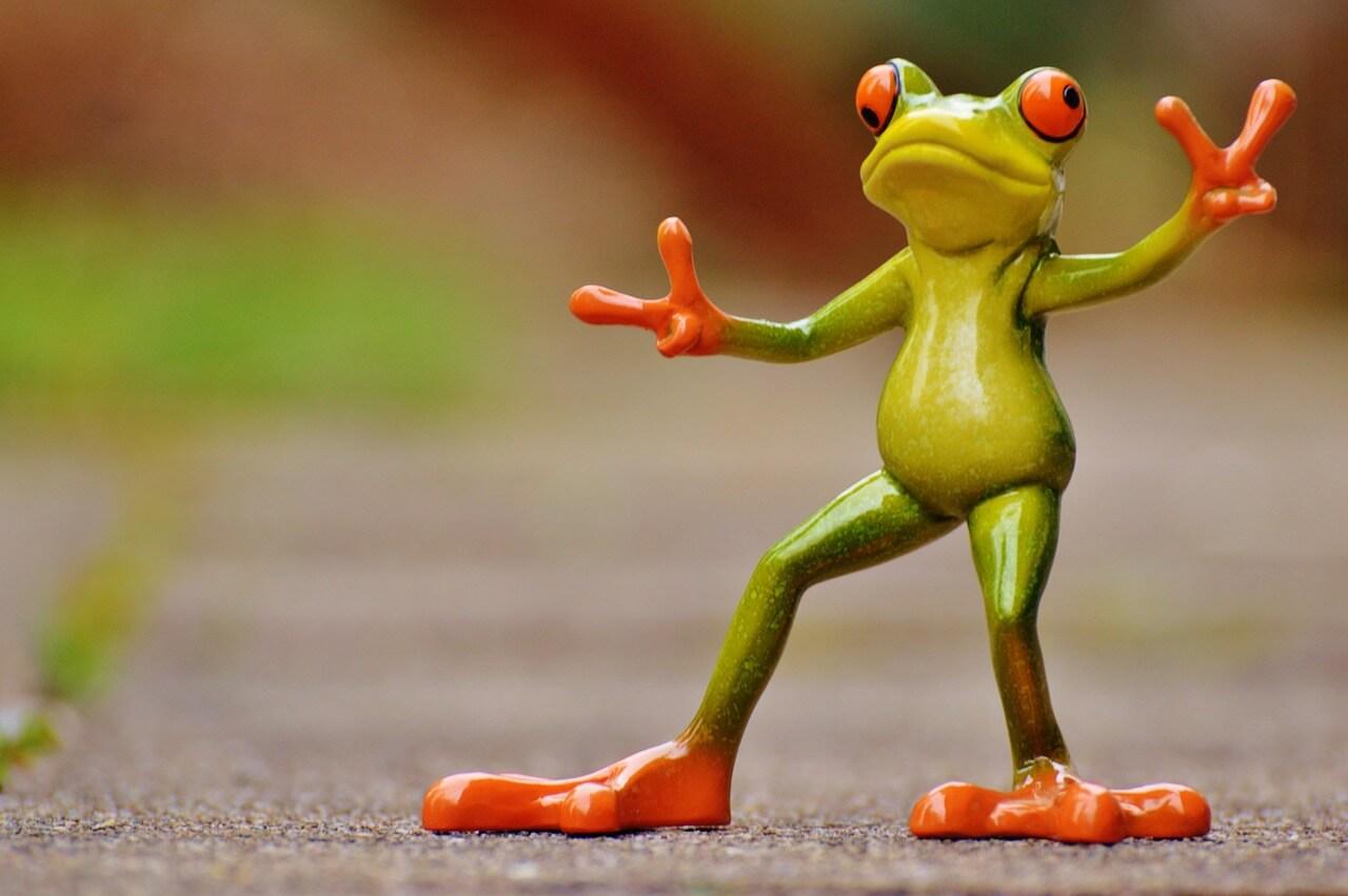 צפרדע צעצוע חמודה