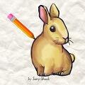 משחק איך לצייר ארנב
