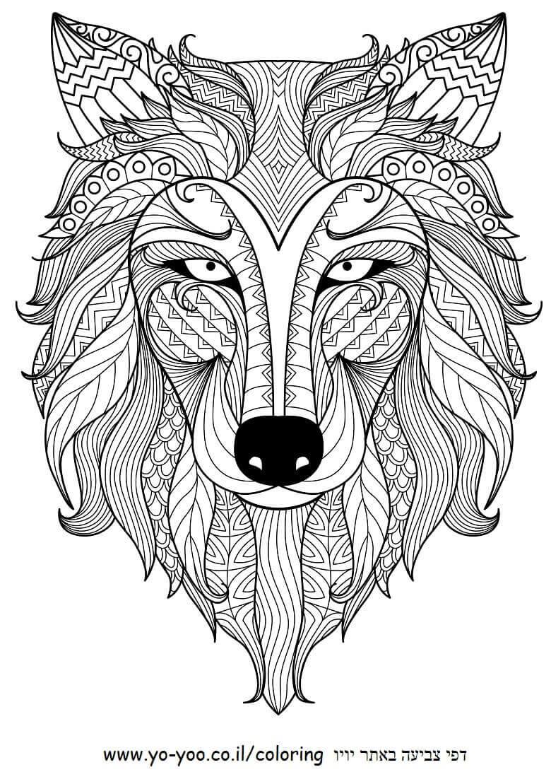 מנדלה זאב דף צביעה