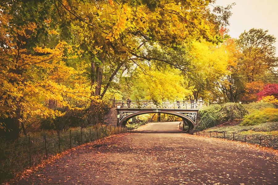 פארק בסתיו