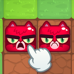 חתולים שמחים עצובים