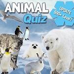 משחק חיות באנגלית