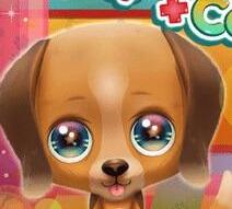 טיפול בגור כלבים