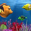 דג אוכל דג מהיר