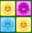 כוח הפרחים