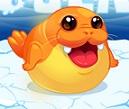 סמי כלב הים