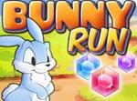 משחק ריצה עם ארנב כמו טמפל ראן , משחק ריצה חמוד וכיף , אספו יהלומים והתחמקו ממכשולים
