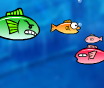 משחק אקווריום דגים , שאתם צריכים לאכול את הדגים הקטנים ולהתחמק מהגדולים