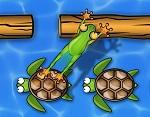 הצפרדע הקופצת- משחק חדש