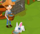 בואו לגדל חווה של ארנבות, להאכיל , לתת להם מים , לקנות ארנבות חדשות ועוד