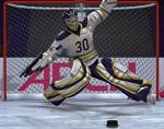 15 בעיטות הוקי קרח- משחק חדש