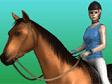 סוסים קופצים 2