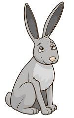 פאזל של ארנב