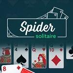 סוליטר עכביש ברשת