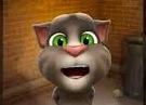 תום החתול המדבר 2