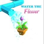 להשקות את הפרח
