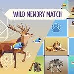זיכרון תמונות חיות