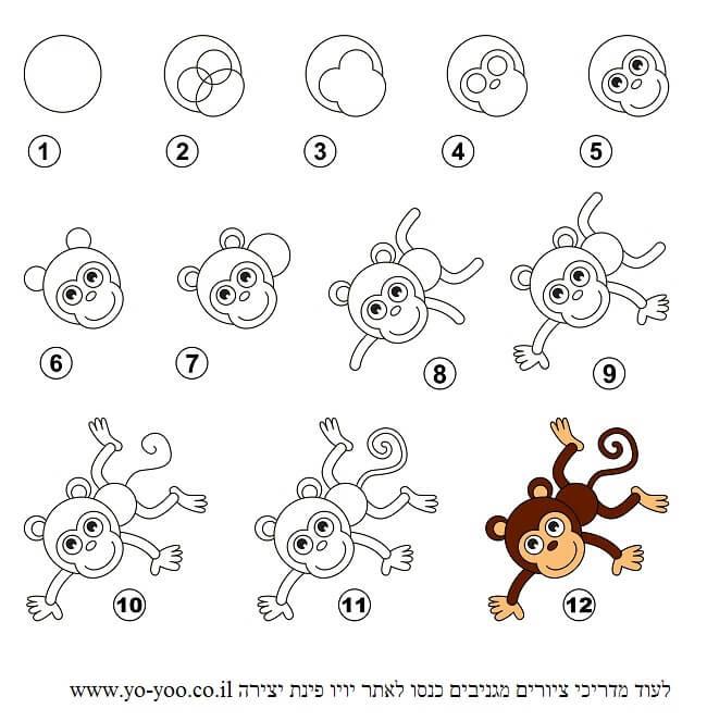 לצייר קוף בשלבים
