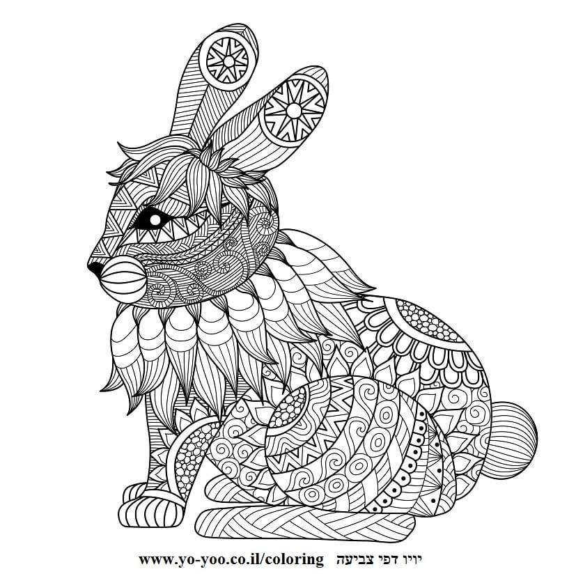 צביעה מנדלה ארנב