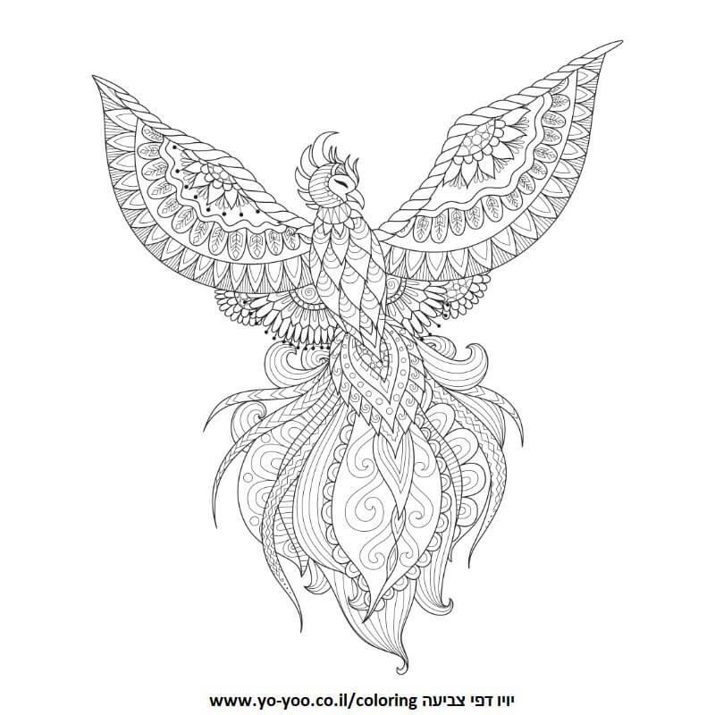 פיניקס ציפור אש