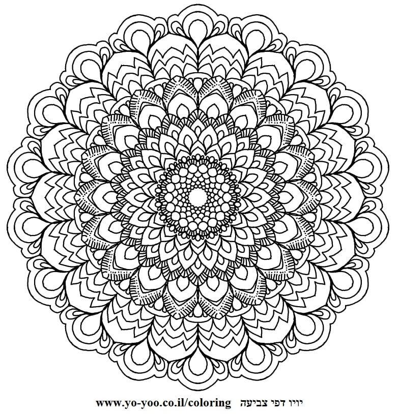 מנדלה פרח גדול