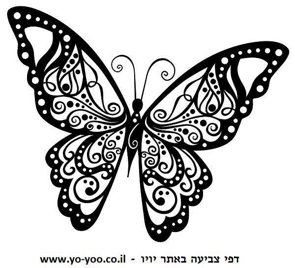 דף צביעה פרפרים