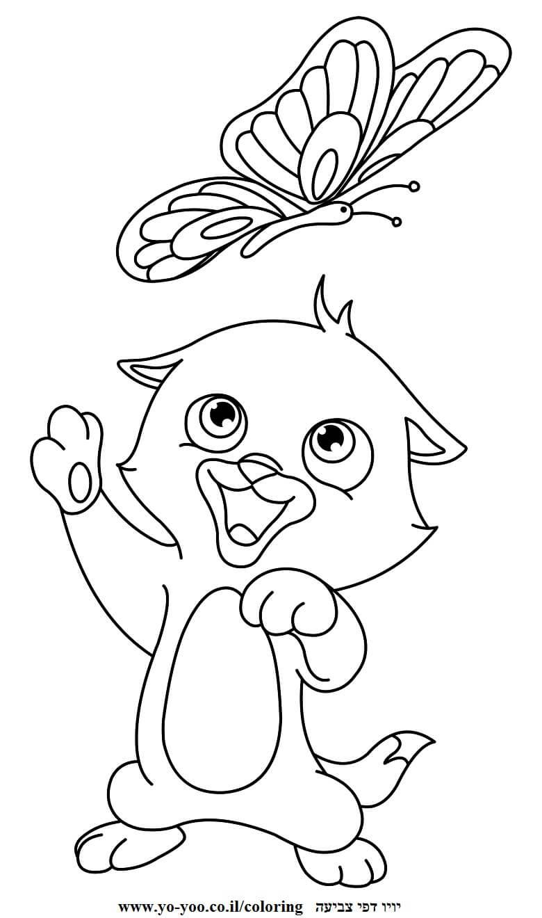 דף צביעה חתול ופרפר