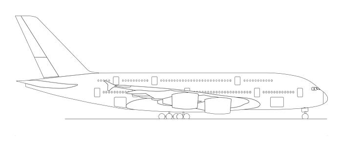 מטוס נוסעים לצביעה