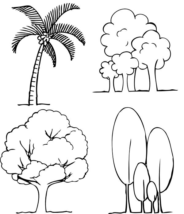 עצים לצביעה