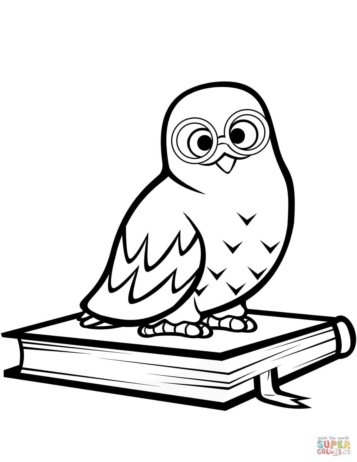 ינשוף על ספר לצביעה