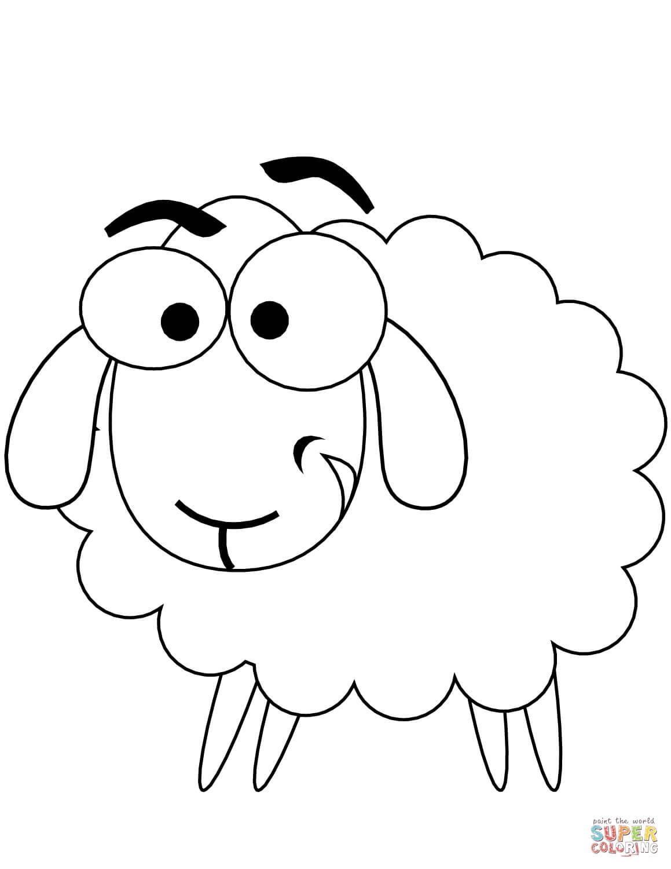 כבשה שמחה לצביעה