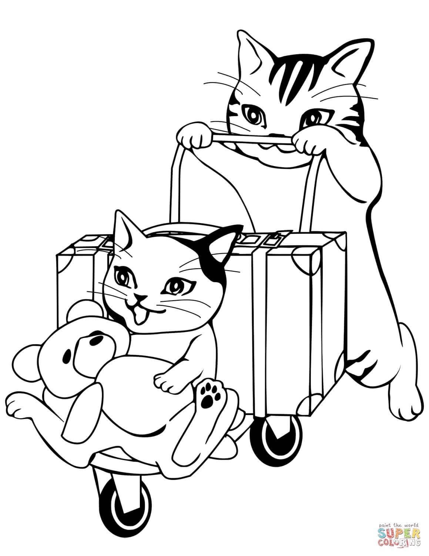 חתולים יוצאים לחופשה לצביעה