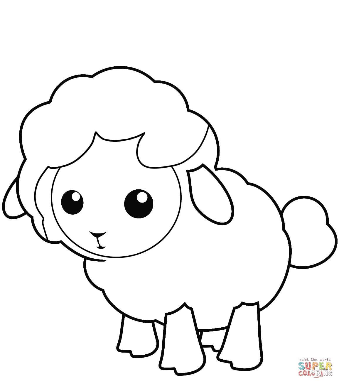 כבשה קטנה לצביעה