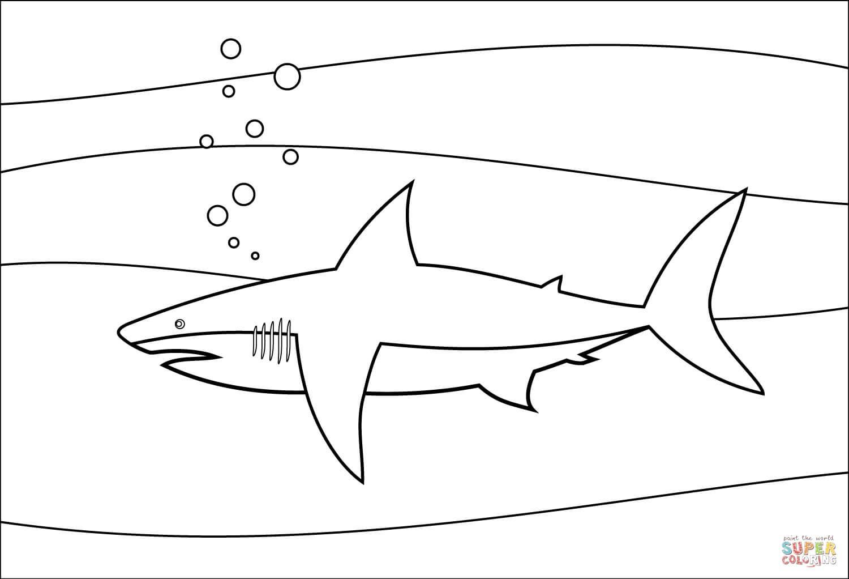 כריש בים לצביעה