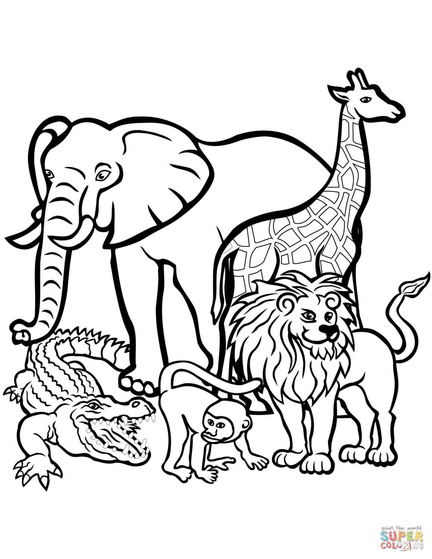 חיות באפריקה לצביעה