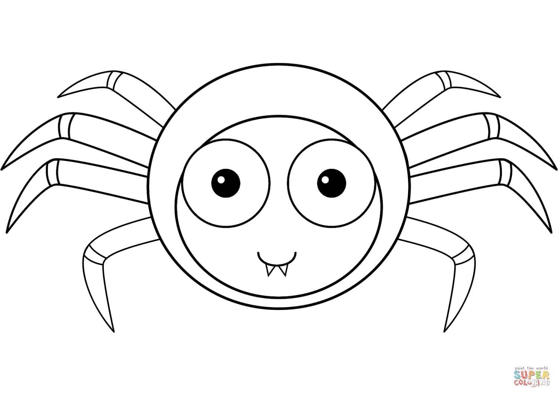 עכביש חמוד לצביעה