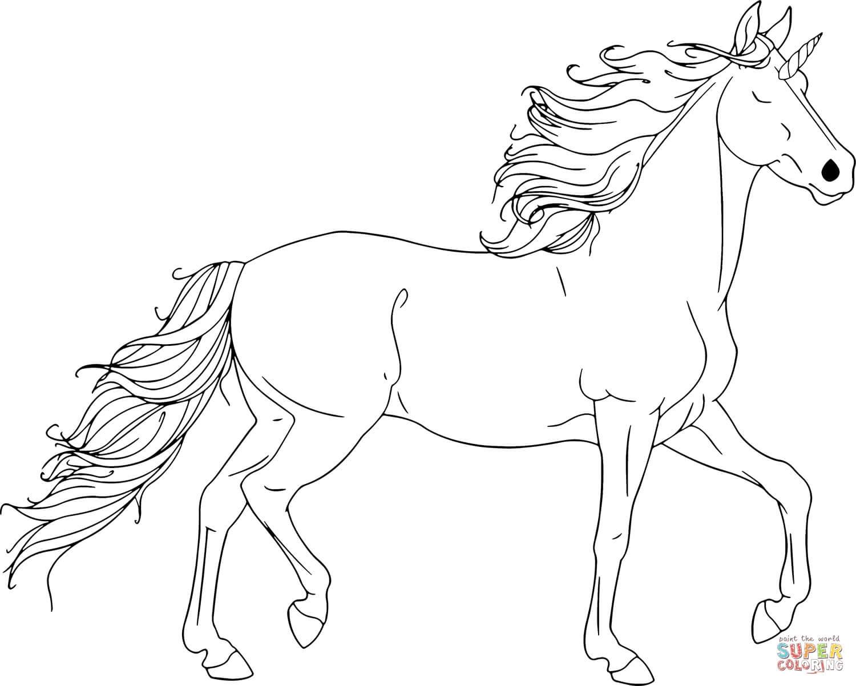 סוס לצביעה