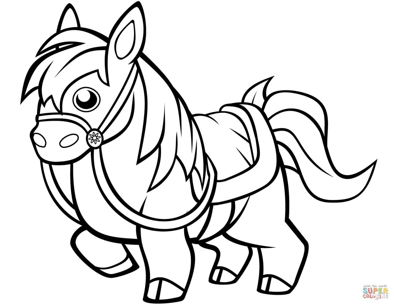 סוס פוני לצביעה