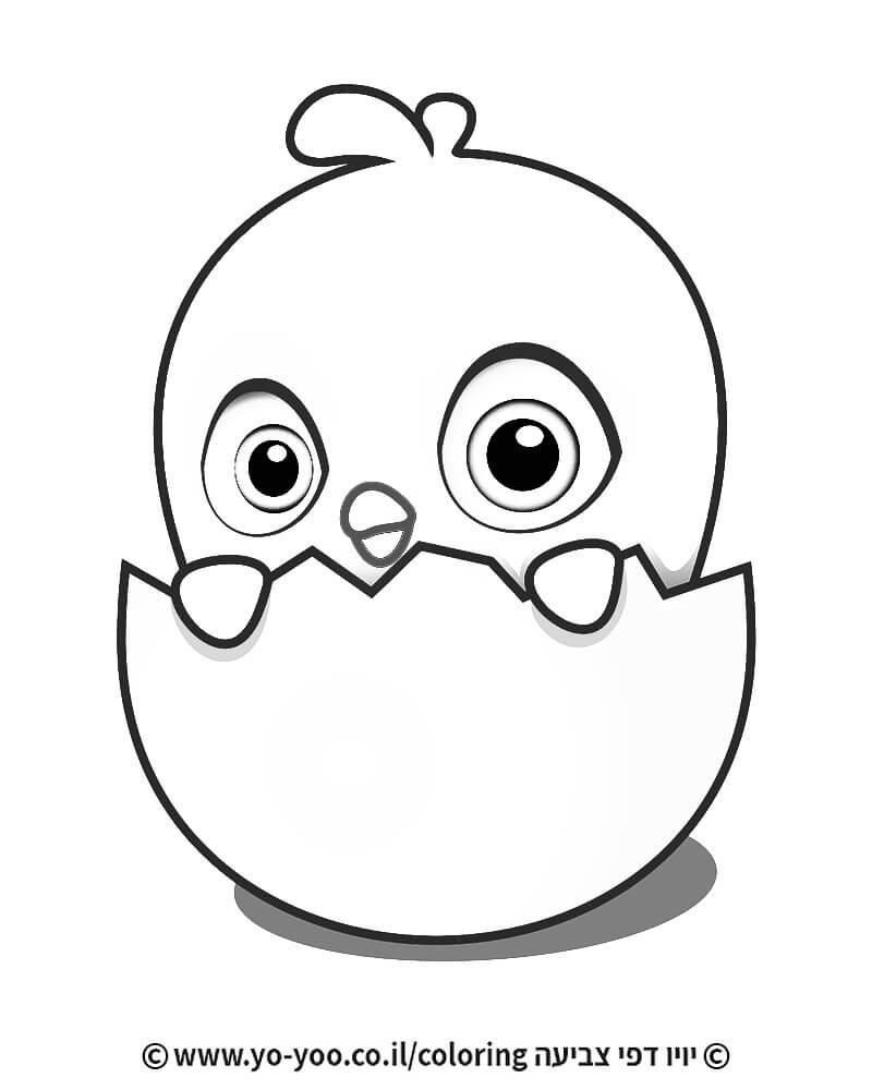 דף צביעה אפרוח וביצה