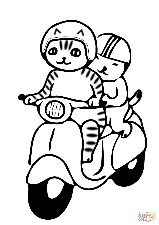 חתולים על אופנוע לצביעה